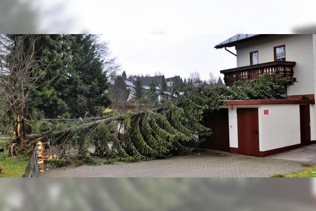 Sturm richtete in Höchenschwand Schaden an