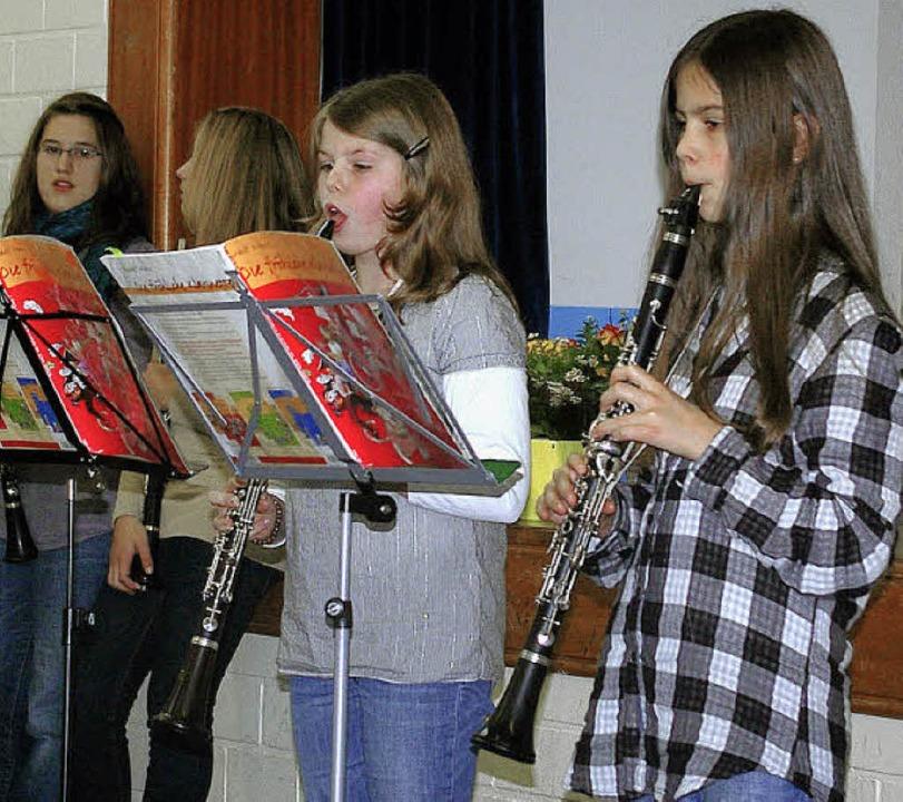 Mit gekonnt vorgetragenen Musikstücken... den Holzhauser Senioren eine Freude.   | Foto: Ernst H. Bilke