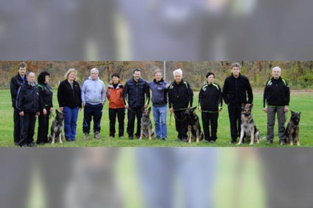 Acht Hundeführer