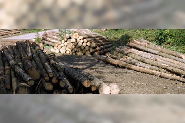 Profitabler Holzverkauf