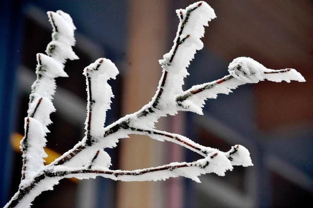Skisaison auf dem Feldberg startet am Samstag