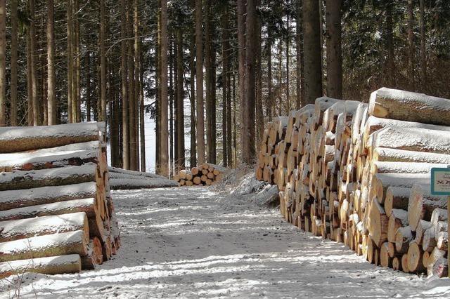 Große Nachfrage nach allen Holzsorten lässt die Holzpreise steigen
