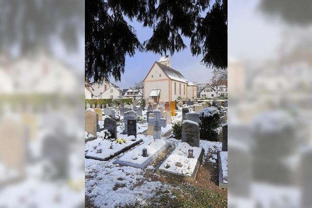 Wildwuchs auf dem Friedhof