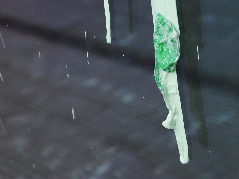 Von mehreren Farbbeuteln getroffen: di...ums in Freiburg. Fotos: Carlotta Huber  | Foto: Carlotta Huber