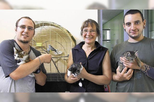 Stadt zahlt für Fundtiere