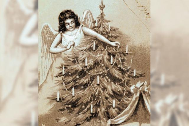 Der Baum wurde nicht selten stibitzt