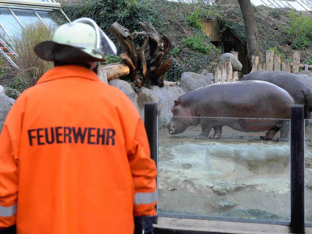 Zoo Karlsruhe Tickets Online Reservieren