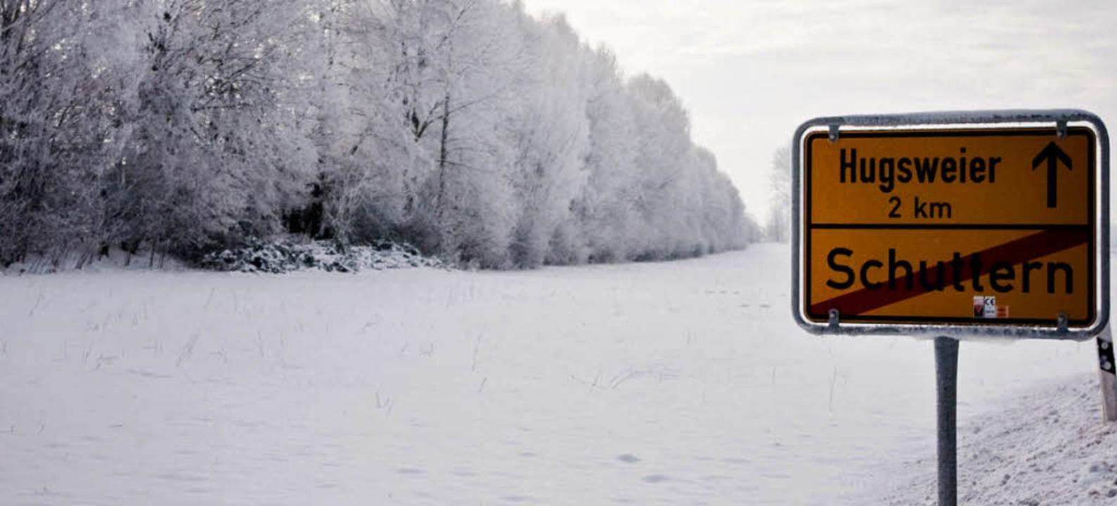 Auch im Winter ist das Dickicht ein artenreiches Biotop.   | Foto: BUND