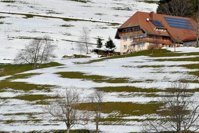 Tauwetter in Südbaden: Höchste Pegelstände bald erreicht