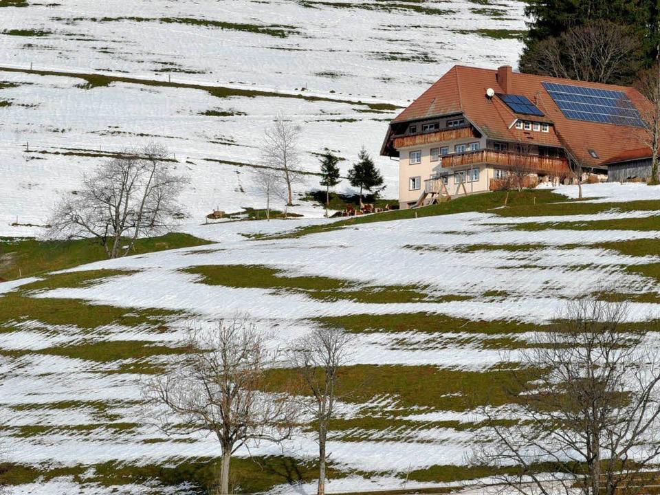 Grün-weiß gefleckt ist die Landschaft ...eren Lagen des Schwarzwalds schmelzen.  | Foto: dpa