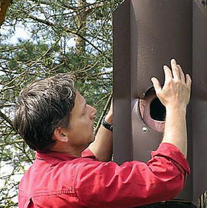 Michael Wilke beim Anbringen eines Nistkastens.     Foto: Truz