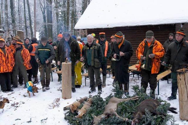 Von Jägern und Gejagten