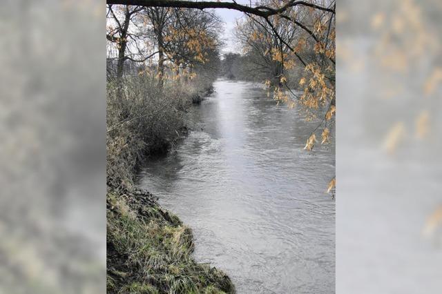 Bahlingen beseitigt die dringendsten Uferschäden