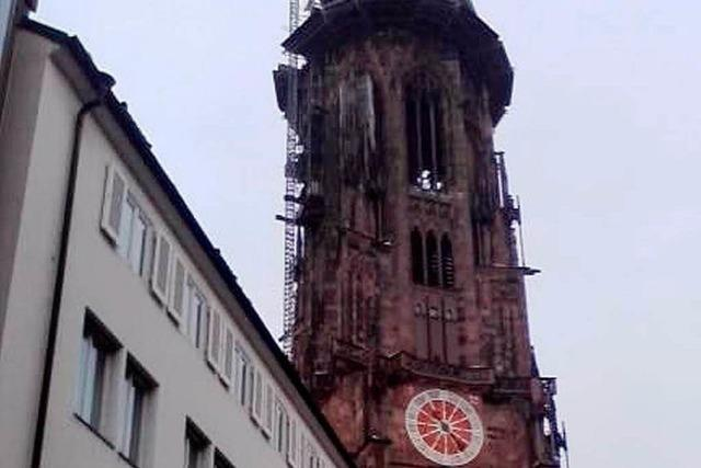Das gefällt uns an Freiburg...