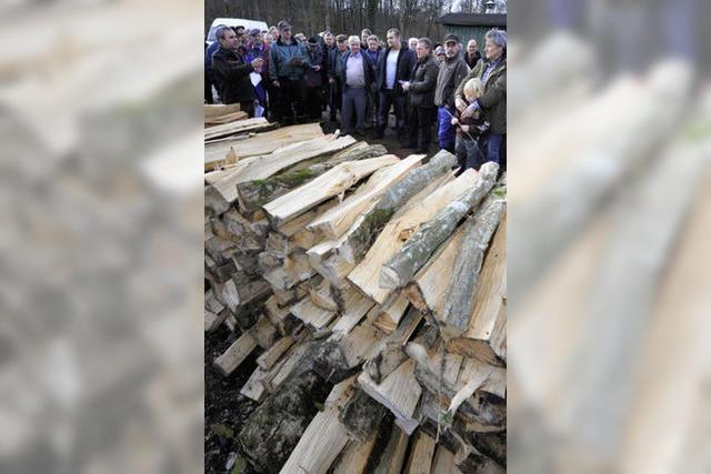Alle Jahre wieder: Opfinger Holzauktion