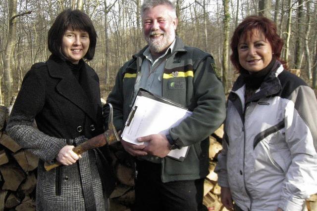 Holzverkauf rechnet sich kaum