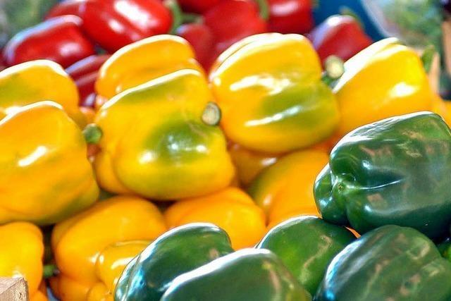 Mit Chemie wird Paprika schneller gelb und rot