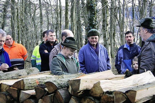 Die Holzpreise ziehen an