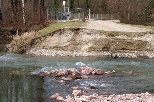 Jede Menge Müll und Schäden im Rheinwald