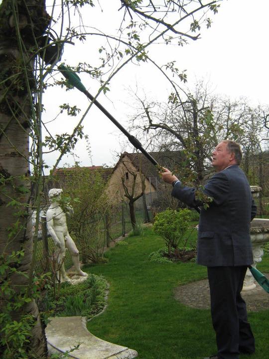 Was er beim Agenda-Baumschnitt-Kurs ge...un in seinem eigenen Garten anwenden.   | Foto: Anne Freyer
