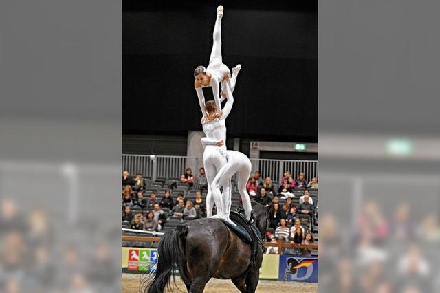 Akrobatik, Tanz und Show