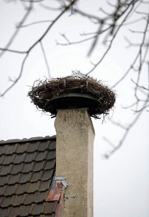 Neue Heimstatt für Störche auf dem Heimethus.   | Foto: Christoph Breithaupt