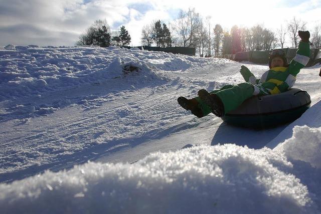Auf Geißböcken durch den Schnee