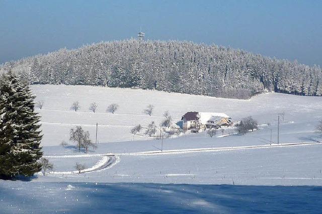 Ein trüber Januar mit wenig Schnee