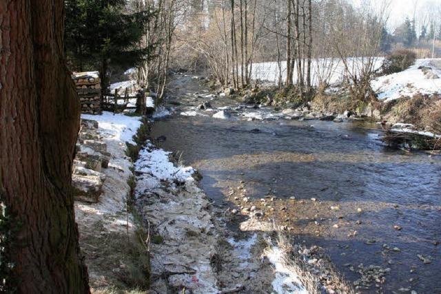 Buchbach billigt Wasserrechtsverfahren für Wagensteigbach