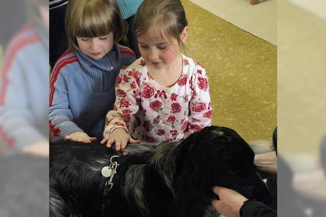 Tierischer Besuch im Kindergarten