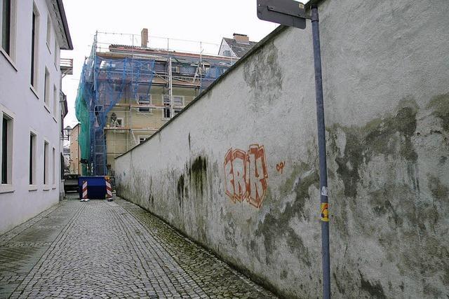 Graffiti-Sprayer und Demokratie-Geschichte - das passt zusammen
