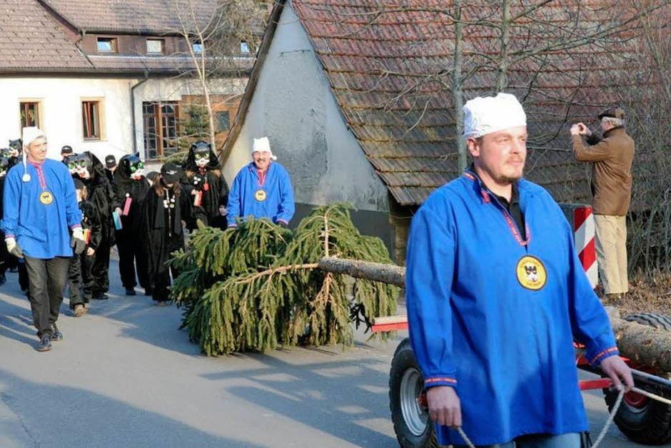 Das Symbol der Fasnet in Ühlingen steht: Zum 30. Schlüchttalnarrentreffen wurde der Narrenbaum auf dem Kirchplatz vor dem Rathaus aufgerichtet. (Foto: Birgit Rüde)
