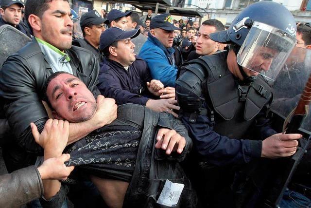 Algerien: Mit Knüppeln gegen die Revolution