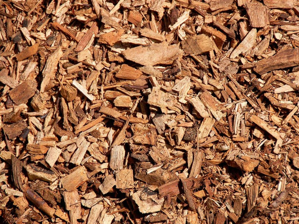Der Einsatz von Holzhackschnitzeln für...ie Waldkircher Klimabilanz ausgewirkt.  | Foto: Silke Kohlmann
