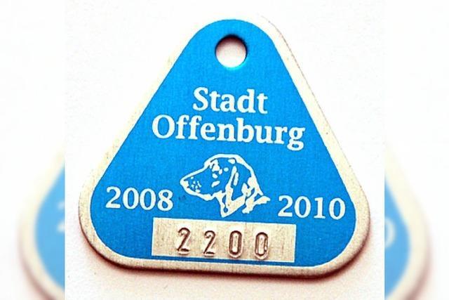 In Offenburg schnüffeln bald Hundefahnder