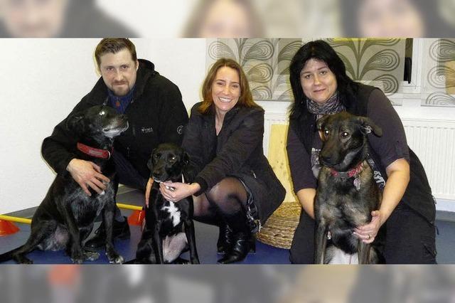 Kooperation mit Tierheim