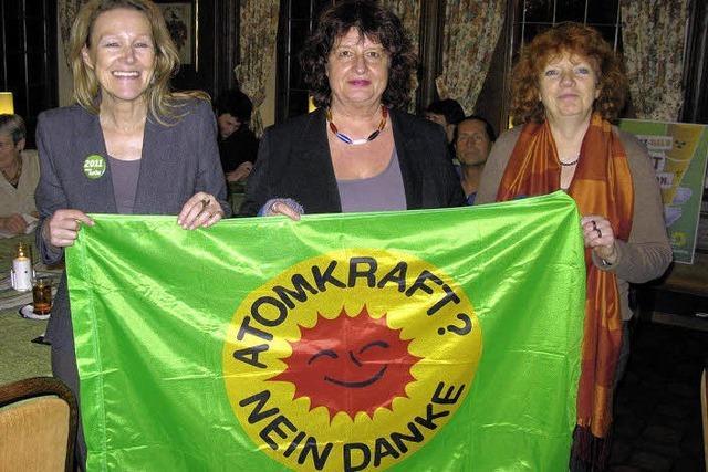 Die Grünen schwören sich auf den Kampf gegen die Atomlobby ein