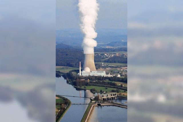 Fehler im Atomkraftwerk Leibstadt