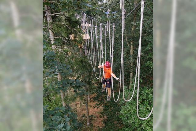 Klettern von Baum zu Baum