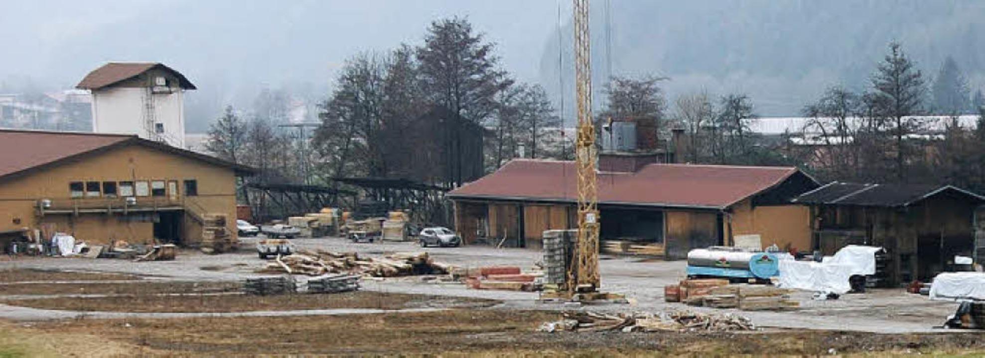 Das Areal des ehemaligen Sägewerks Kap...werblicher Bebauung zugeführt werden.     Foto: Elfriede Mosmann
