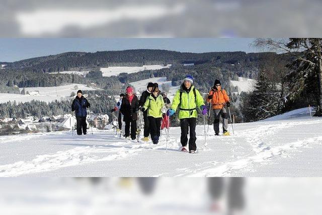 Abenteuer Winterwald