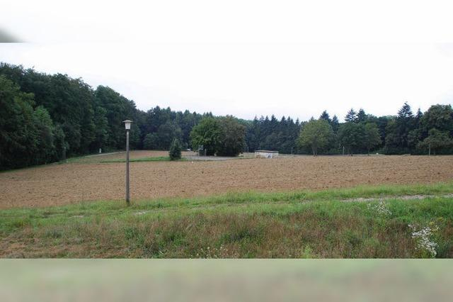 BASF will Neufeld-Süd verkaufen