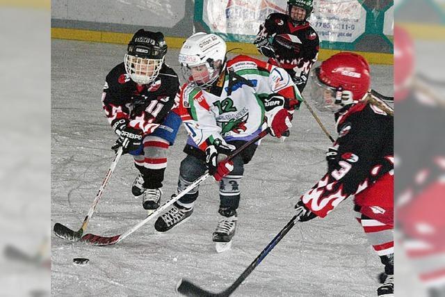 Übung macht auf dem Eis den Meister