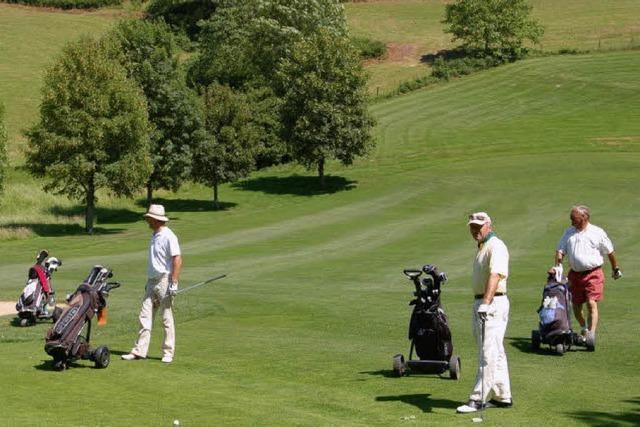 Neue Golfer werden gesucht