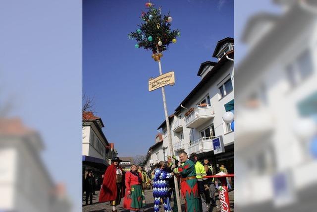 Narrenbaum auf dem Lammplatz