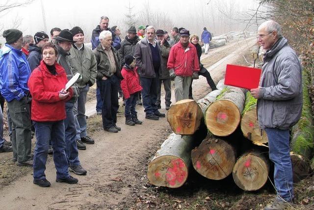Wandern, Holz ersteigern und Feiern