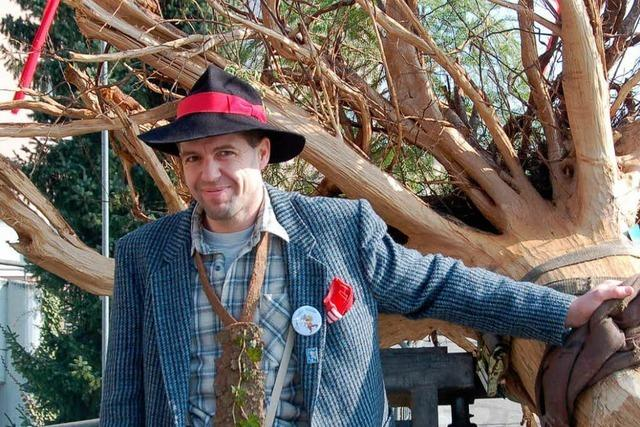 Fotos: Laufenburger Narrenbaum auf Reisen