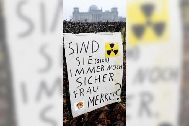 Schwarz-Gelb im Atom-Dilemma