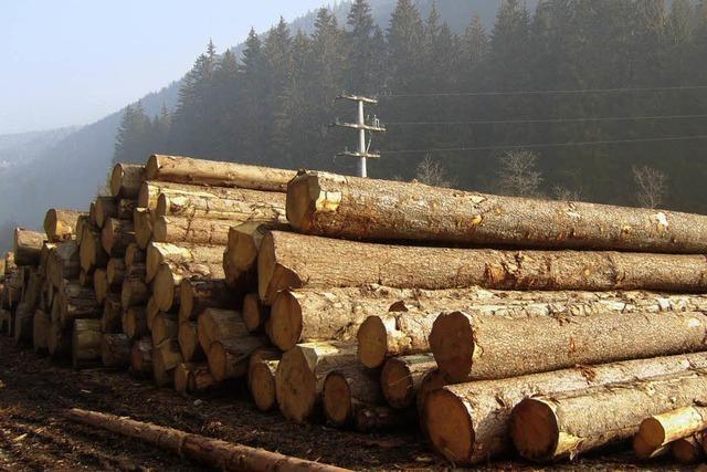 Erfolgreiches Forstjahr für die Gemeinde Bernau