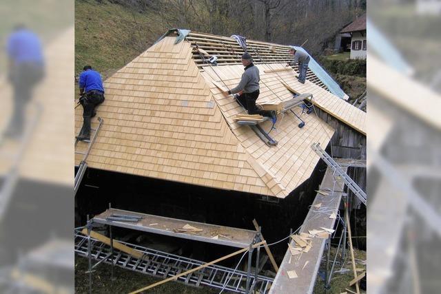 Neues Dach für Klopfsäge